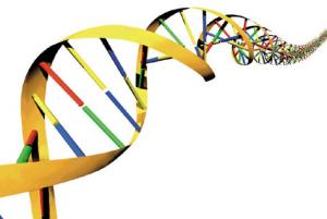 Jakie jest DNA twoich czytelników?